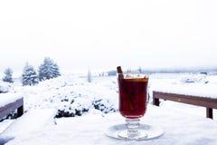 Overwogen wijn in de sneeuw Royalty-vrije Stock Afbeeldingen