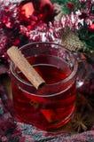 Overwogen wijn met kaneel Stock Afbeelding