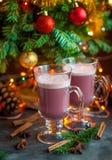 Overwoog de zoete hete de alcoholdrank van de Kerstmiswinter rode wijnglintwi Royalty-vrije Stock Fotografie