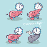 Overwork liver Stock Photography