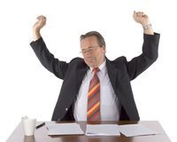 Overworked or lazy chief Stock Photography