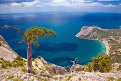 Overzees, boom en berg Stock Afbeeldingen