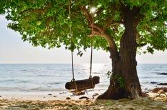 Overzees en boom Stock Afbeeldingen