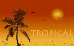 Overzees en kokospalm. Vectorzonsondergang Stock Afbeelding