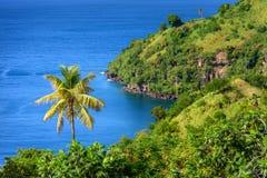 Overzees en palmen in Heilige Vincent en de Grenadines, mooie exotisch stock afbeelding