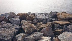 Overzees en stenen Stock Foto