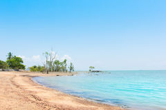 Overzees en strand Royalty-vrije Stock Foto
