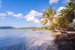 Overzees, hemel en kokospalmen op het strand, Blauwe hemel en overzees Stock Foto's