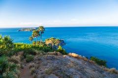 Overzees kust tropisch rotsachtig strand met palm Royalty-vrije Stock Afbeeldingen