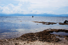 Overzees landschap met mensensilhouet Zeegezicht met ver eiland stock foto's