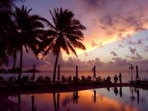 Overzees met palmen Stock Afbeelding