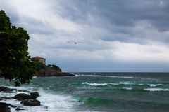 Overzees onweer en zeemeeuw, Bulgarije royalty-vrije stock fotografie