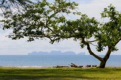 Overzees op krabi zo mooi Thailand stock fotografie