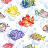 Overzees patroon Tropische Vissen kwallen Oceaan Stock Afbeeldingen