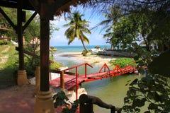 Overzees scape met palmen en rivier Stock Afbeelding