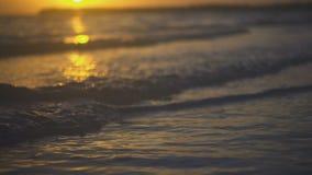 Overzees schuim op de achtergrond van de het plaatsen gouden zon stock videobeelden