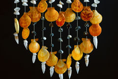 Overzees shell decor Royalty-vrije Stock Fotografie