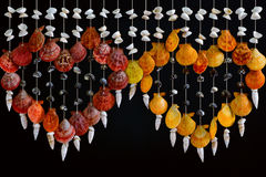 Overzees shell decor. Royalty-vrije Stock Fotografie