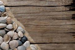 Overzees shell kader op oud hout met exemplaarruimte Stock Fotografie