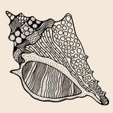 Overzees Shell met abstract patroon Royalty-vrije Stock Afbeeldingen