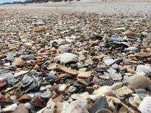 Overzees shell zandbar Stock Fotografie
