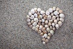 Overzees shells Hart Stock Foto's