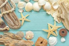 Overzees shells kader Royalty-vrije Stock Afbeelding
