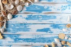Overzees shells kader op uitstekende blauwe houten raad royalty-vrije stock foto's