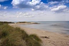 Overzees strand met vegetatie stock foto