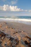 Overzees strand op een de zomerochtend royalty-vrije stock foto