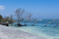Overzees van Bali Stock Foto