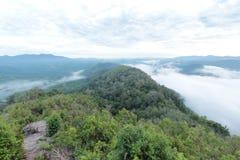 Overzees van mist in de ochtendtijd Royalty-vrije Stock Fotografie