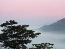 Overzees van mist geen bos en berg rode hemel Stock Foto's