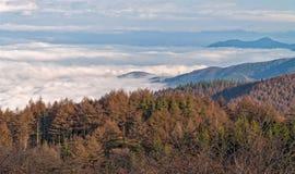 Overzees van mist in Takabotchiyama, Okaya, Japan Stock Foto's