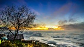 Overzees van mist in Thailand Royalty-vrije Stock Afbeeldingen