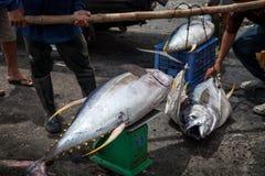 Overzees Voedsel Bali, Populaire Vissenmarkt Jimbaran, Indonesië Royalty-vrije Stock Foto's