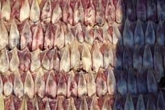 Overzees voedsel in Thailand Royalty-vrije Stock Afbeelding