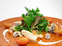 Overzees voedselsalade 3 Royalty-vrije Stock Afbeelding