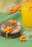 Overzees-wegedoorn en hete drank van bessen Royalty-vrije Stock Afbeeldingen