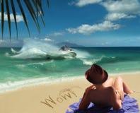 Overzees, zon, verrukking & pret. Royalty-vrije Stock Afbeelding