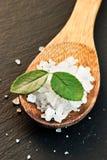 Overzees zout met bladeren Royalty-vrije Stock Fotografie