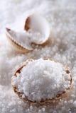 Overzees zout in overzeese shell op zoutenachtergrond Stock Afbeelding