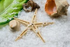 Overzees zout in shell op zouten Stock Afbeelding