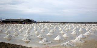 Overzees zout in zout landbouwbedrijf stock afbeelding