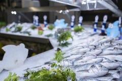 Overzeese baarzen en overzeese brasems op ijs op de vertoning van supermarktzeevruchten royalty-vrije stock fotografie