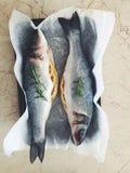 Overzeese baarzen met rozemarijn Stock Fotografie