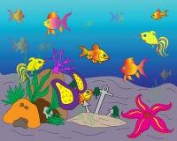Overzeese bodem met zeewierinstallaties en cockleshell Stock Foto