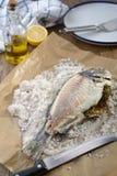 Overzeese die brasem in zout wordt gebakken Stock Fotografie