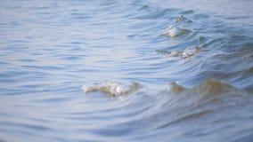Overzeese die golven door zeilboten worden veroorzaakt Water het bewegen zich stock video