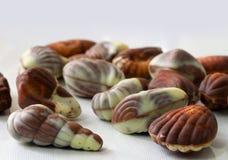 Overzeese gestalte gegeven shell assorteerde Belgische chocolade op witte achtergrond sluit omhoog macrobeeld stock afbeeldingen
